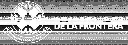 Logo UFRO blanco horizontal